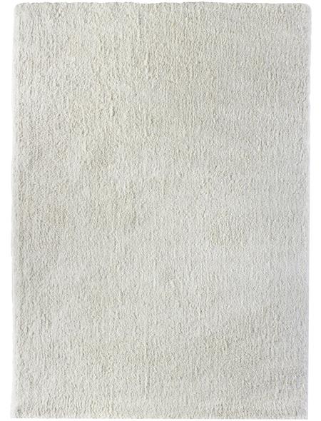 Hochflor-Teppich »BB«, rechteckig, Florhöhe: 25 mm