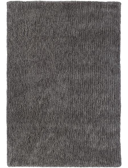Hochflor-Teppich, BxL: 160 x 230 cm, taupe