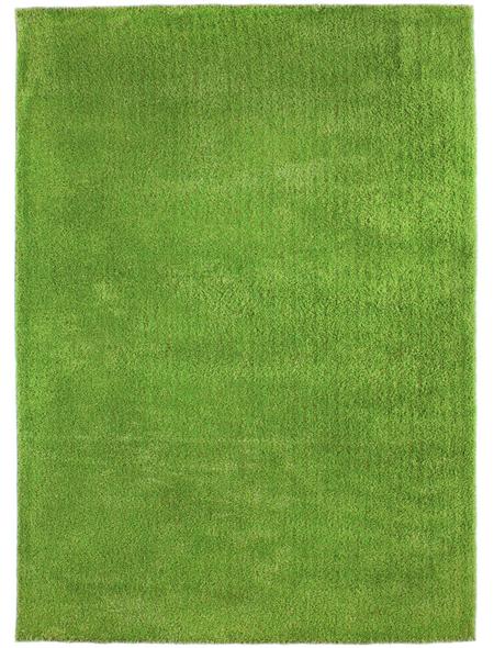 ANDIAMO Hochflor-Teppich »Manarolo«, BxL: 130 x 190 cm, hellgrün