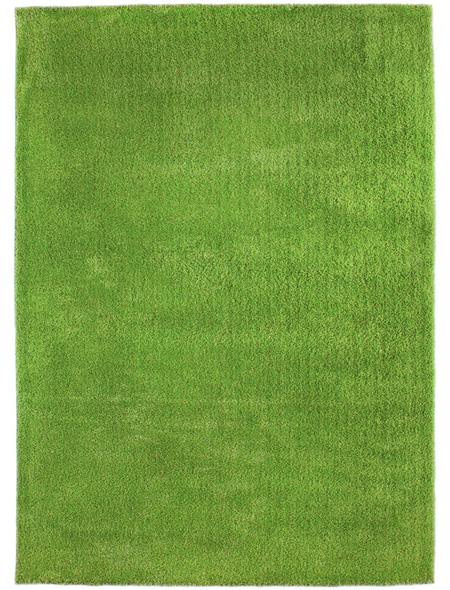ANDIAMO Hochflor-Teppich »Manarolo«, BxL: 65 x 135 cm, hellgrün