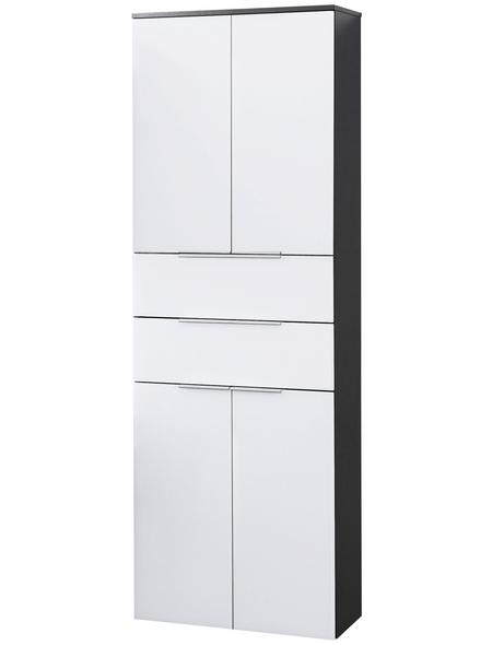FACKELMANN Hochhängeschrank B x H x T: 61 x 176 x 32 cm