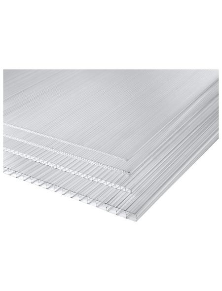 PALRAM Hohlkammerplatte, BxL: 980 x 2000 mm, Polycarbonat (PC)
