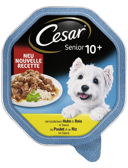 CESAR Hunde Nassfutter »10+«, 14 Schalen à 150 g