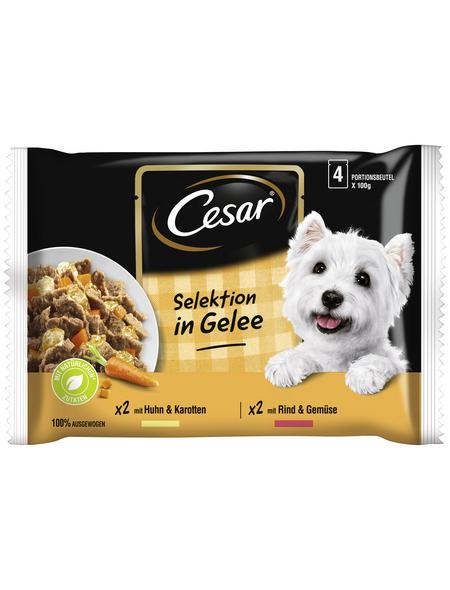 CESAR Hunde-Nassfutter »Cesar«, 13 Packungen