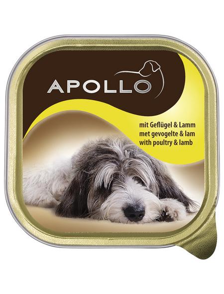apollo Hunde Nassfutter, Geflügel / Lamm, 22x150 g