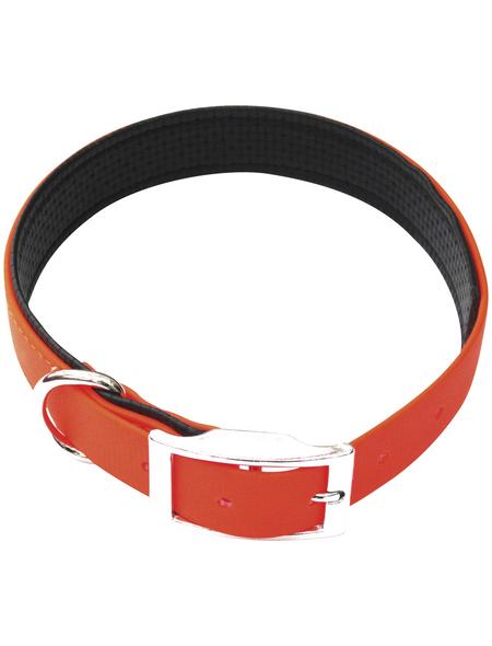 Hundehalsband, Größe: 45  cm, Biothane, neonorange