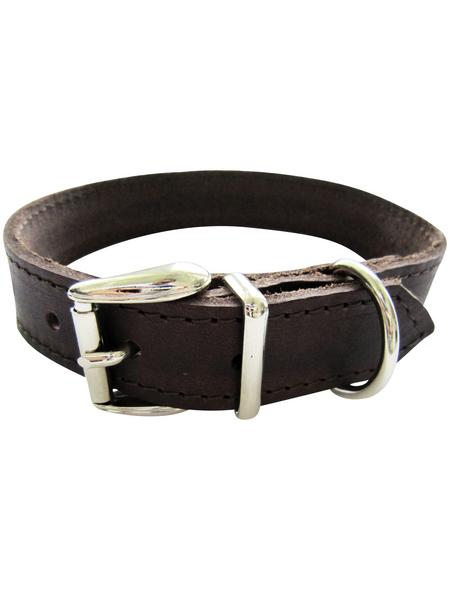 Hundehalsband, Größe: 45  cm, Rindsleder, braun