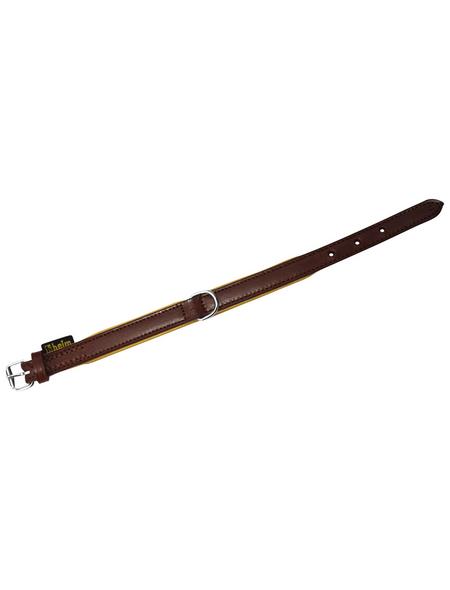 Hundehalsband, Größe: 45  cm, Rindsleder, natur/braun