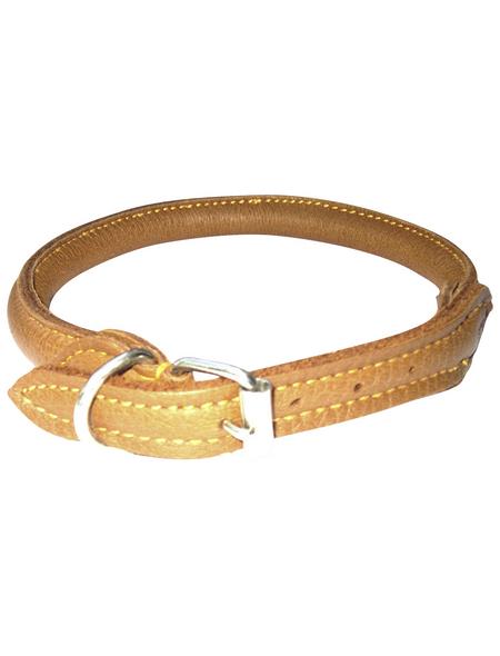 Hundehalsband, Größe: 50  cm, Rindsleder, cognacfarben