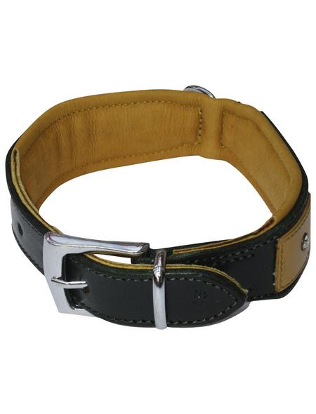 Hundehalsband, Größe: 50  cm, Rindsleder, gruen/cognacfarben