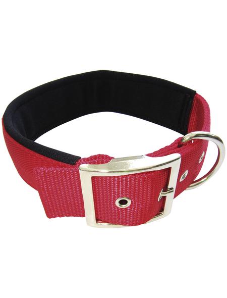 Hundehalsband, Größe: 50  cm, rot