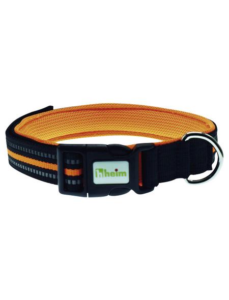 Hundehalsband, Größe: m, orange