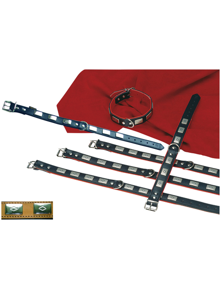 Hundehalsband »Modern Art«, Größe: 55  cm, Rindsleder, schwarz