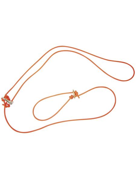 Hundeleine »Modern Art«, Größe: 2 m, Biothane, orange
