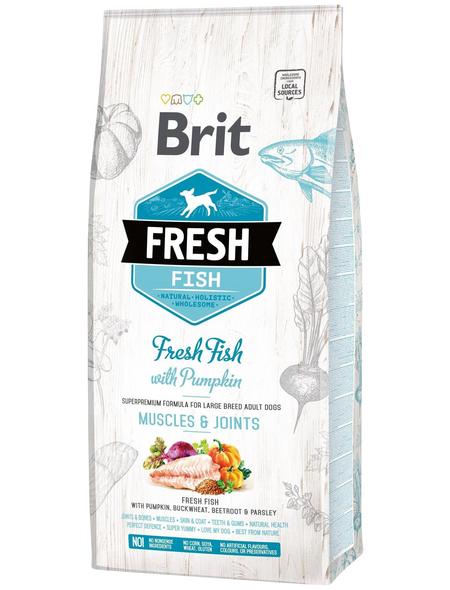 Hundetrockenfutter »BRIT Fresh Dog«, Fisch, 12000 g