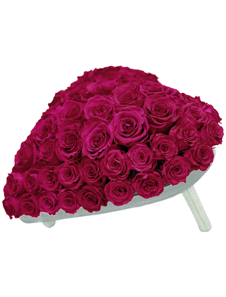 »Infinity-Bloom«, Rosenherz , rosa