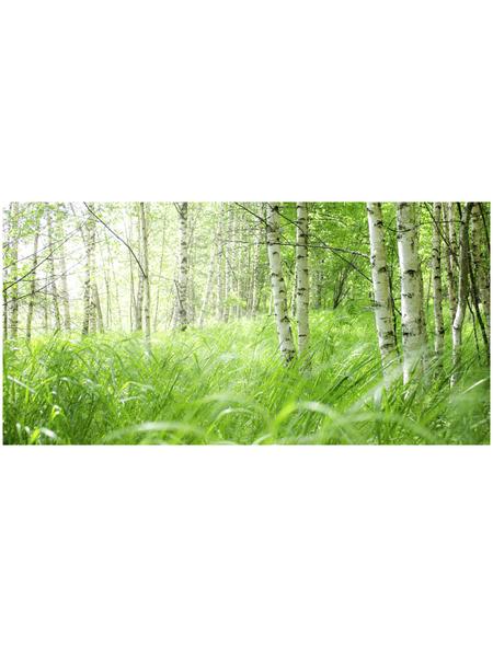 Papermoon Infrarotheizung »EcoHeat - Wald«, Glänzend