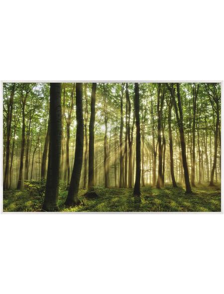 Papermoon Infrarotheizung »EcoHeat - Wald | Morgensonne«, Matt