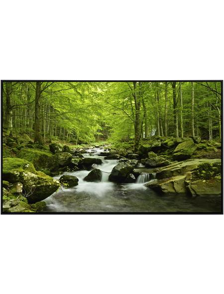 Papermoon Infrarotheizung »EcoHeat - Wasser | Wald«, Matt