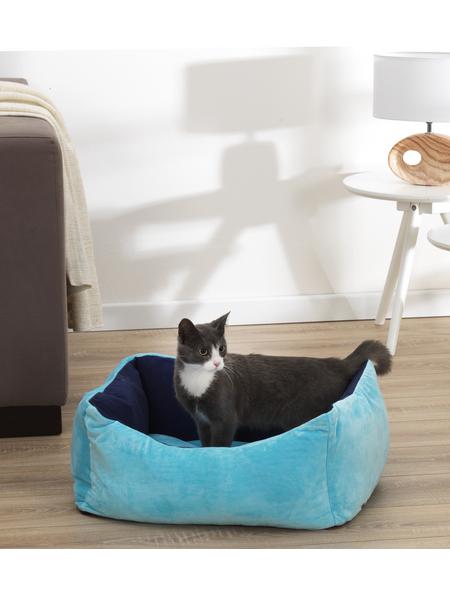 Katzen-Bett, blau