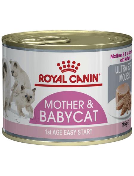 ROYAL CANIN Katzen-Nassfutter, 1 x FHN DS Babycat Instinctive