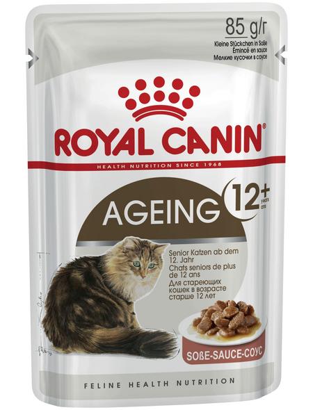 ROYAL CANIN Katzen-Nassfutter, 1 x FHN Pouch AGEING +12