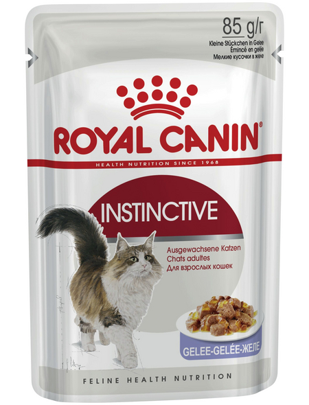 ROYAL CANIN Katzen-Nassfutter, 1 x FHN Pouch INSTINCTIVE in Gelee