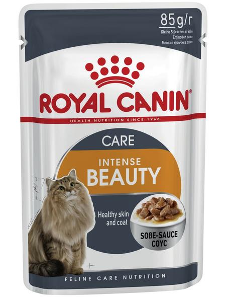 ROYAL CANIN Katzen-Nassfutter, 1 x FHN Pouch INTENSE BEAUTY