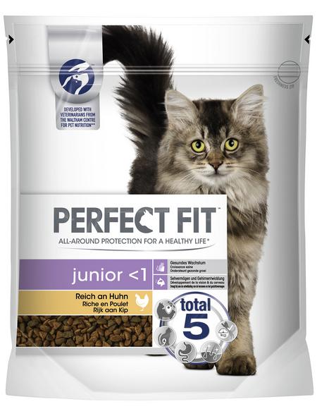 PERFECT FIT™ Katzentrockenfutter, 6 Beutel