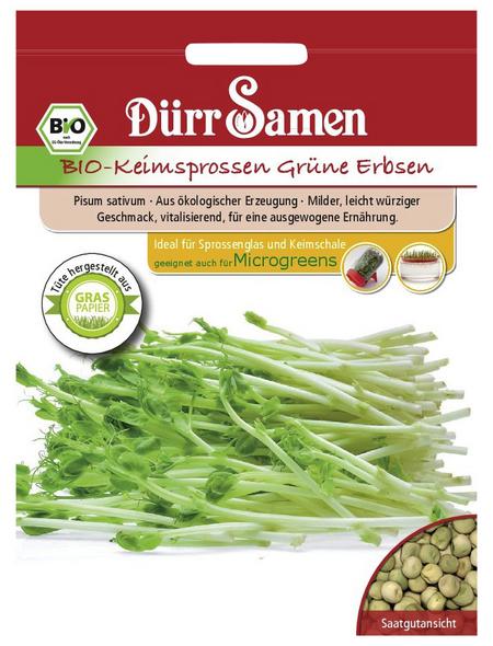 DÜRR SAMEN Keimsprossen Grüne Erbsen sativum Pisum