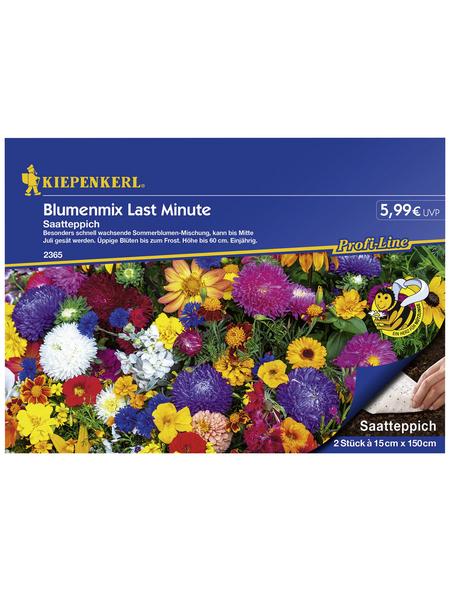 KIEPENKERL Kiepenkerl Antirrhinum Columbia Mix