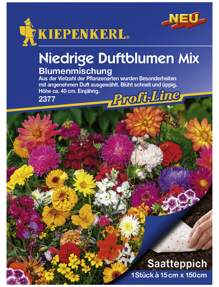 KIEPENKERL Kiepenkerl Blumen-Kombi Wine Cooler