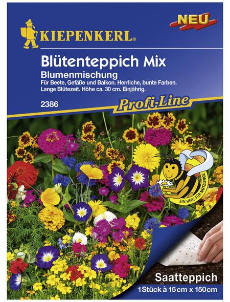 KIEPENKERL Kiepenkerl Blumenmischung Niedrige Duftblumen
