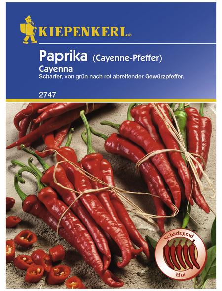 KIEPENKERL Kiepenkerl Paprika Cayenna