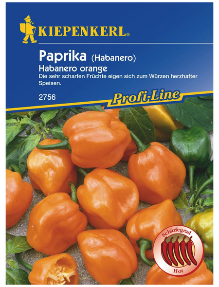KIEPENKERL Kiepenkerl Paprika Habanero Orange