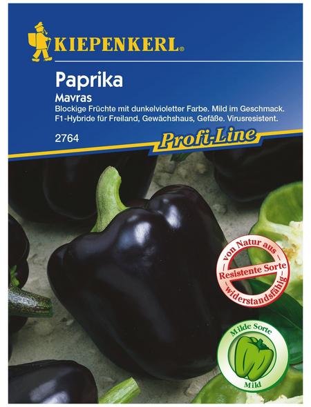 KIEPENKERL Kiepenkerl Paprika Purpleflame F1