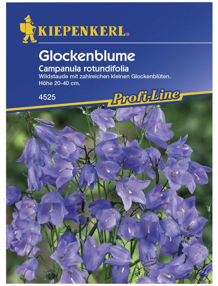 KIEPENKERL Kiepenkerl Saatgut, Glockenblume, Campanula rotundifolia Glockenblume, Mehrjährig