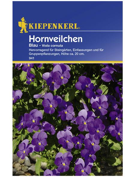 KIEPENKERL Kiepenkerl Saatgut, Hornveilchen, Stiefmütterchen Viola Cornuta, Zweijährig