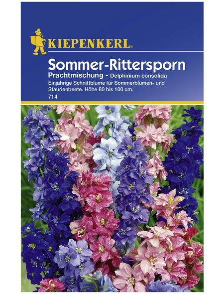 KIEPENKERL Kiepenkerl Saatgut, Rittersporn, Delphinium Rittersporn, Einjährig