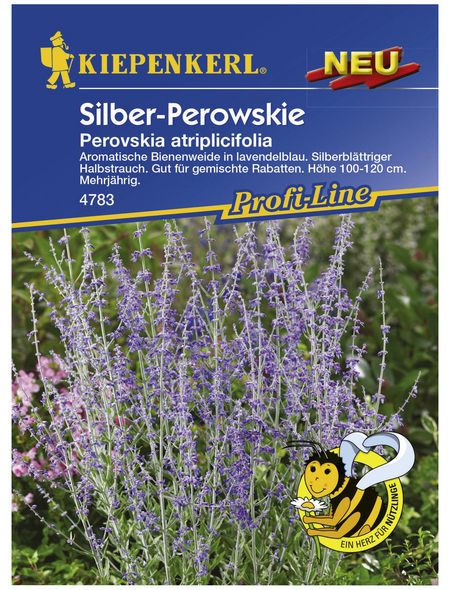 KIEPENKERL Kiepenkerl Saatgut, Silber-Perowskie, Perowskie Silberstrauch, Mehrjährig