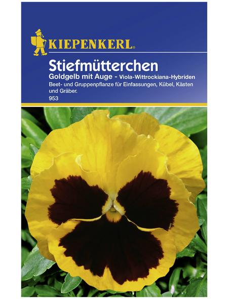 KIEPENKERL Kiepenkerl Saatgut, Stiefmütterchen, Stiefmütterchen Viola, Zweijährig