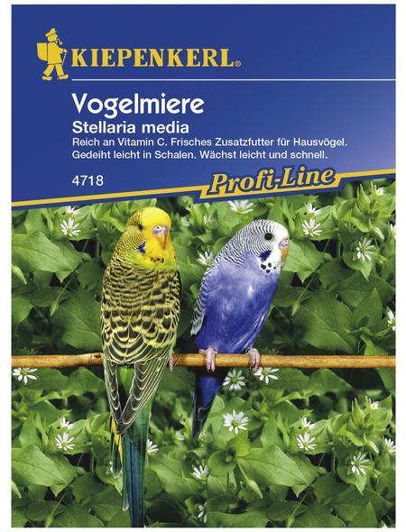 KIEPENKERL Kiepenkerl Saatgut, Vogelmiere, Vogelmiere, Einjährig