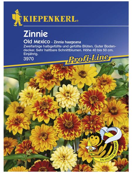 KIEPENKERL Kiepenkerl Saatgut, Zinnie, Zinnia Old Mexico, Einjährig