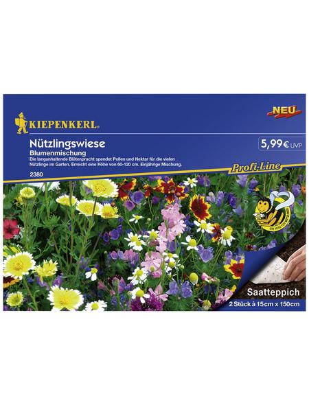 KIEPENKERL Kiepenkerl Schnittblumenmix Ländlicher Charme