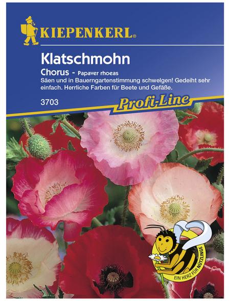 KIEPENKERL Klatschmohn, Papaver rhoeas, Samen, Blüte: mehrfarbig