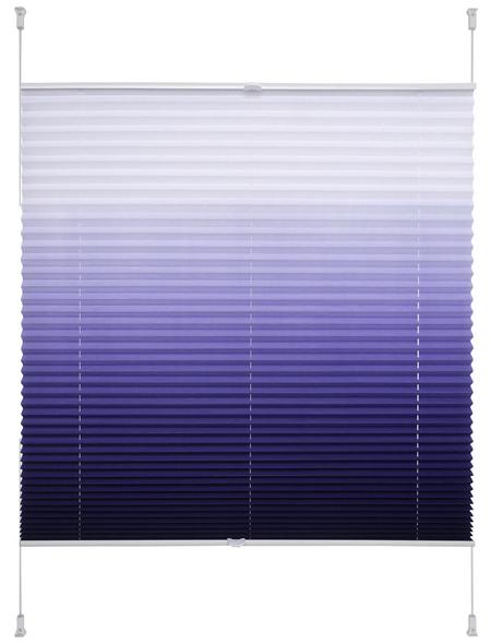 LIEDECO Klemmfix-Plissee, 100x130 cm