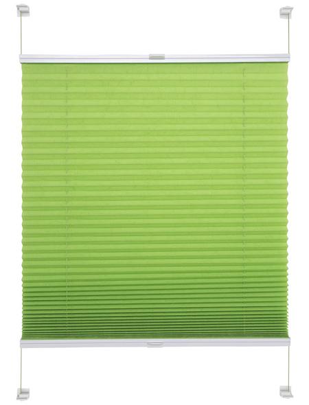 LIEDECO Klemmfix-Plissee, Young Colours, 100x150 cm