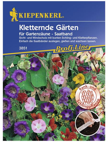 KIEPENKERL Kletternde Gärten Mix Saatb., Samen, Blüte: mehrfarbig