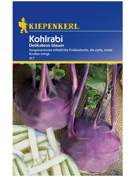 KIEPENKERL Kohlrabi oleracea var. Gongylodes Brassica »Delikateß blauer«