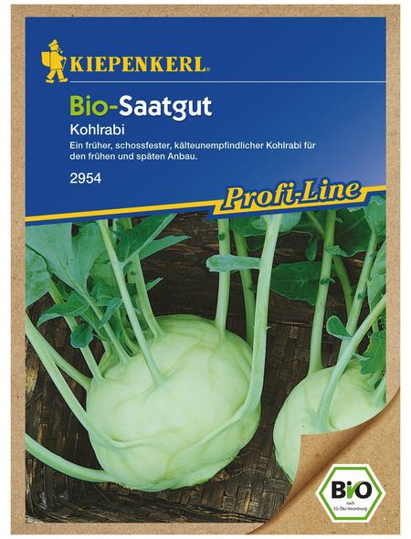 KIEPENKERL Kohlrabi oleracea var. Gongylodes Brassica »Lanro«